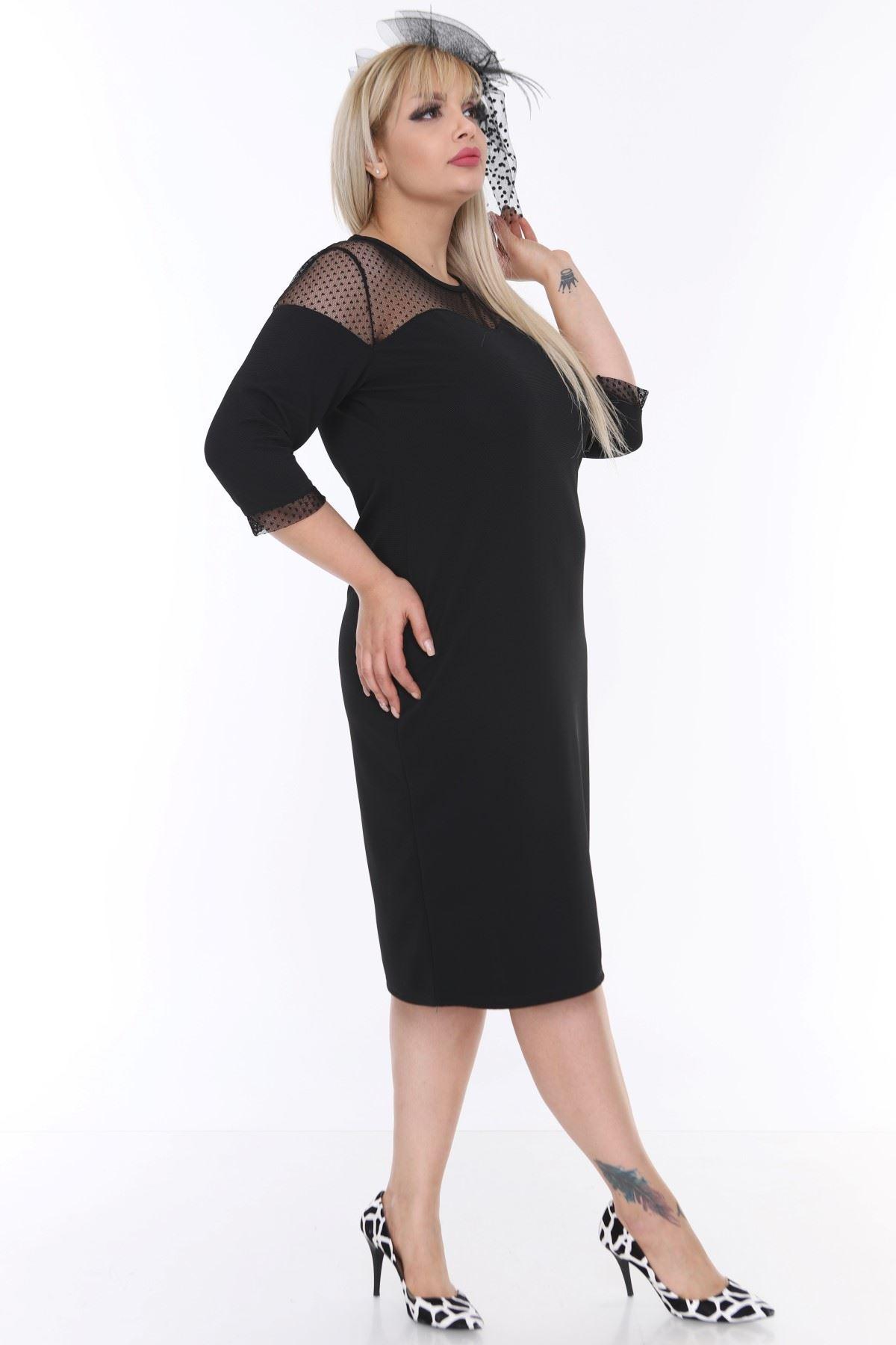 Roba Manşet Tüllü Büyük Beden Elbise 16E-0473