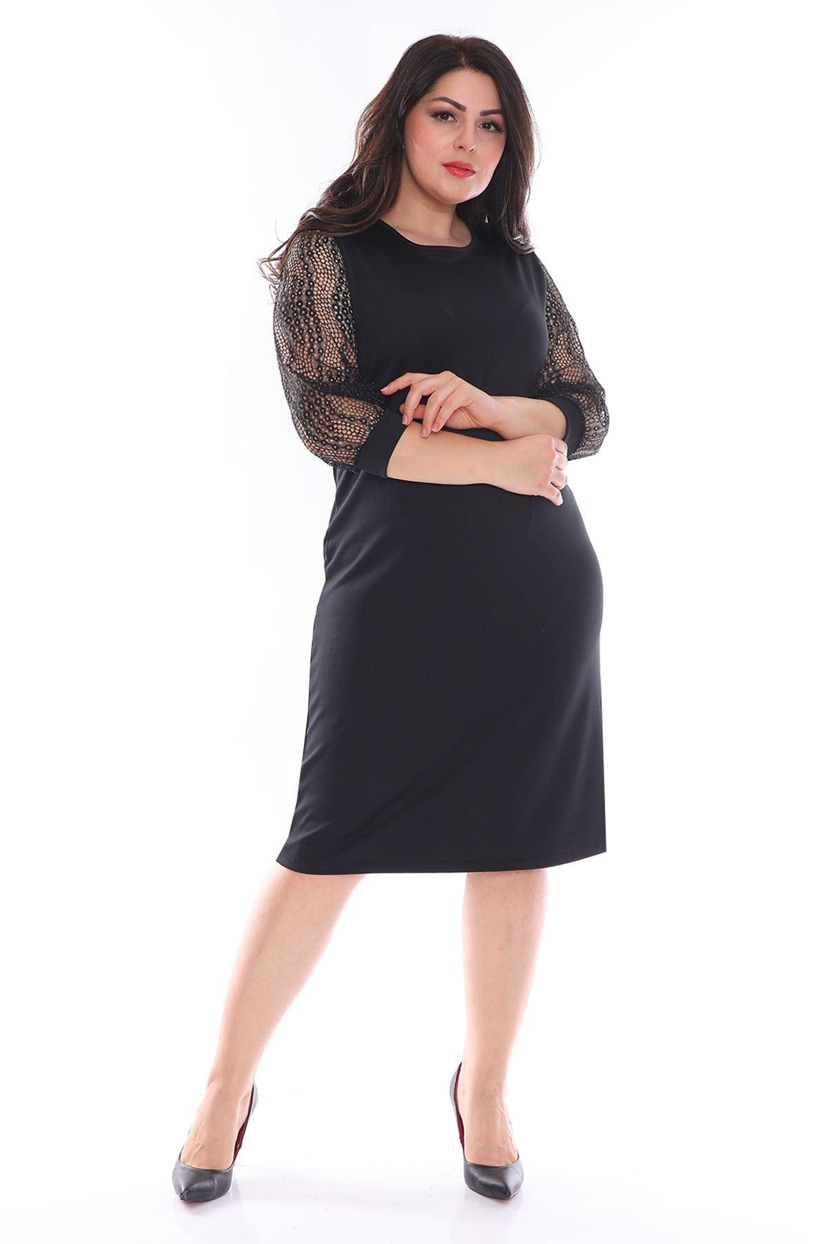 Siyah Kolları Dantel Büyük Beden Elbise 11A-0946