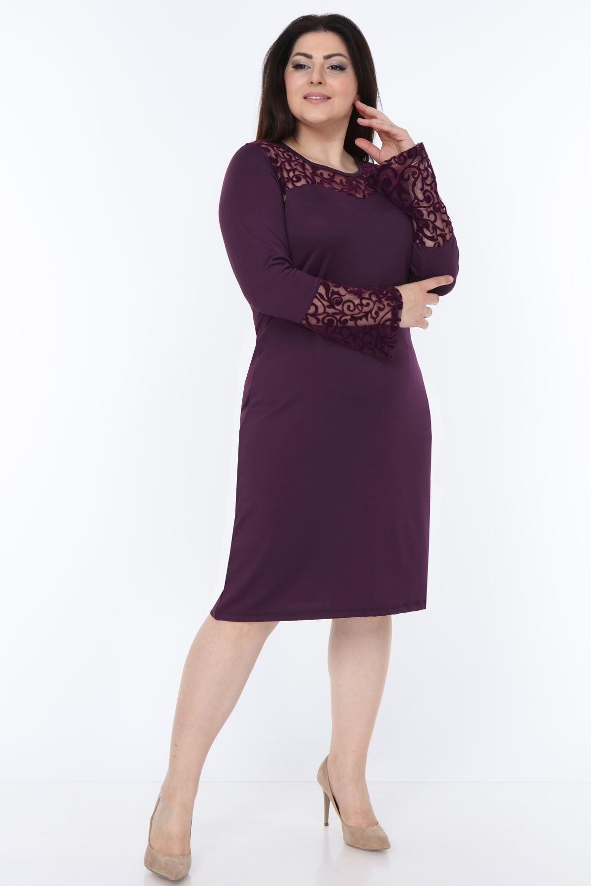 İspanyol Kol Mor Büyük Beden Elbise 4D-69249